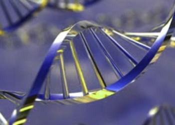 Ученые нашли гены распространенных заболеваний