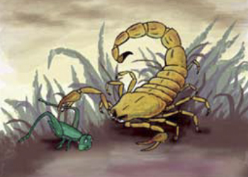 Яд скорпиона справится с раком мозга